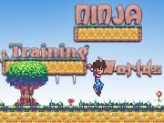 Ninja Training Worlds Game - New Games