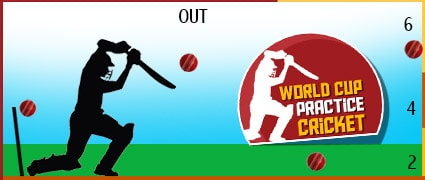 World Cup Practice Cricket Game - Cricket Games